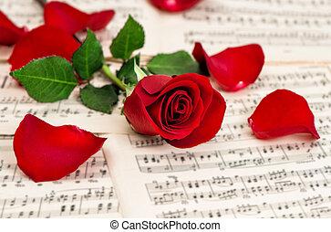 rosa, notas, música, vermelho, flower.