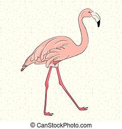 rosa, oavgjord, flamingo, hand