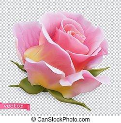 rosa, objeto, vetorial, 3d, realístico, cor-de-rosa