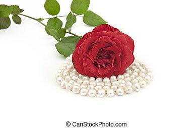 rosa, pérola, fundo, colar, branco vermelho