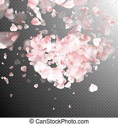 rosa, pétalos, eps, falling., 10