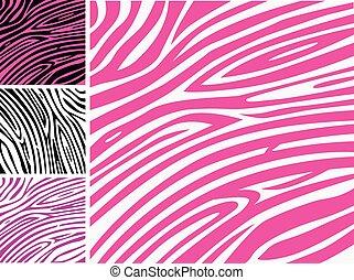 rosa, pelle zebra, stampa animale, modello