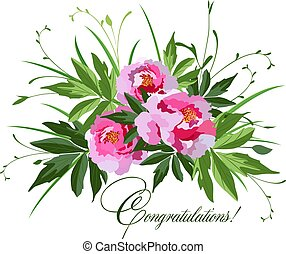 rosa, peonies, mazzolino, illustrazione, vettore, bianco
