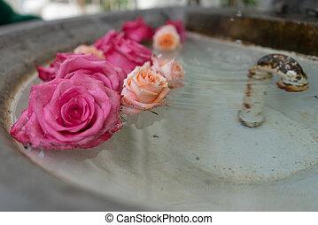 rosa, piedra, viejo, arreglo, rosas, fuente, floral, ...