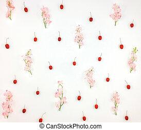 rosa, plano, flores, patrón, colocar, toadflax, fondo., blanco, bayas, punta la vista