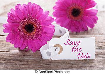 rosa, primavera, gerbera, etiqueta, texto, fecha, excepto