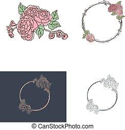 rosa, progetto serie