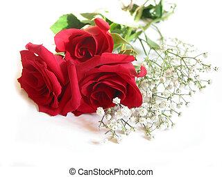 rosa, ramo, blanco