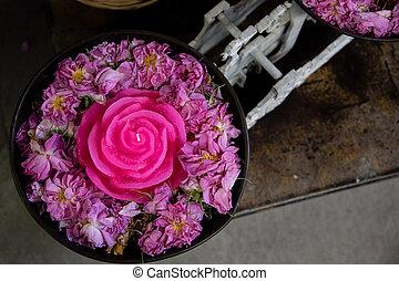 rosa, recipiente, rosas cor-de-rosa, vela