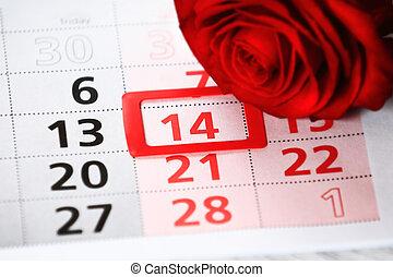 rosa roja, pone, en, el, calendario, con, el, fecha, de, february 14, día de valentín