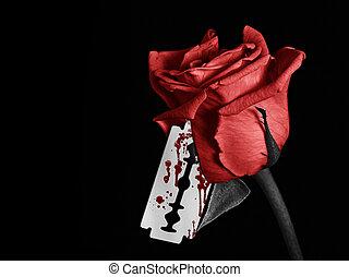 rosa, sanguinante