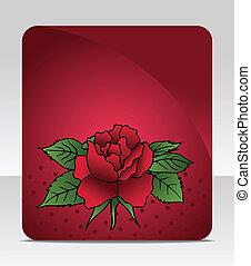 rosa, scheda, celebrazione