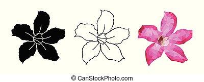 rosa, set, flower., -, isolato, adenium, tropicale, vettore, fondo, fiori bianchi