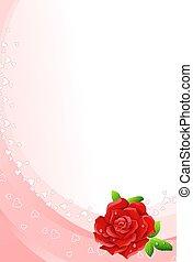 rosa, sfondo rosso