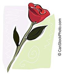 rosa, sketchy