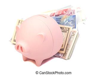 rosa, soldi, isolato, banconote, piggy, internazionale, bianco, banca