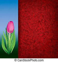 rosa, tulipán, resumen, floral, plano de fondo