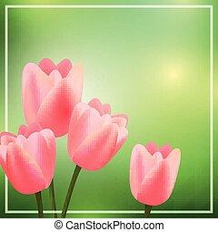 rosa, tulips, vettore, sfondo verde