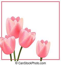 rosa, tulips, vettore