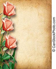 rosa, vendimia, felicitaciones, tarjeta, rosas