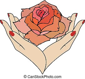 rosa, vetorial, fêmea passa
