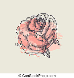 rosa, vetorial, ilustração artística