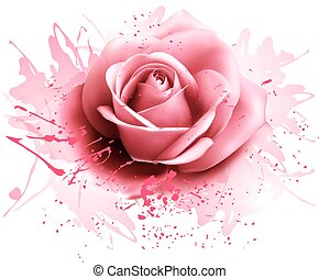 rosa, vettore, rose., cartolina auguri