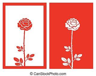 rosa, vettore, rosso