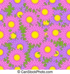 rosa, viola, modello, foglie, seamless, asters, sfondo verde