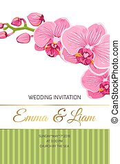 rosa, wedding, phalaenopsis, einladung, karte, orchidee