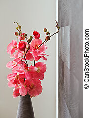 rosa, withe, vimine, vaso, fiori, orchidea