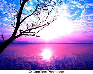 rosa, y azul, cielo