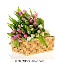 rosa, y, blanco, tulipanes, en, cesta