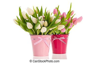rosa, y, blanco, tulipanes, en, cubos