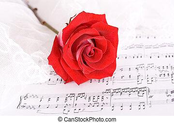 rosa, y, música