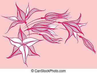 rosafarbene blume