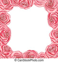 rosafarbene rosen, rahmen