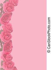 rosafarbene rosen, stationär, verblichen