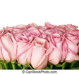 rosafarbene rosen, umrandungen