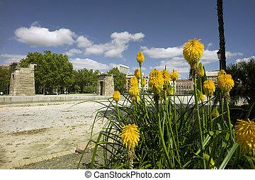 Rosaleda park. Madrid. Spain