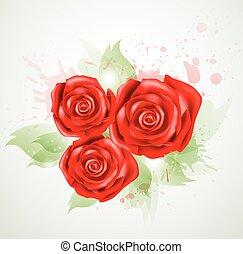 rosas, abstratos, fundo