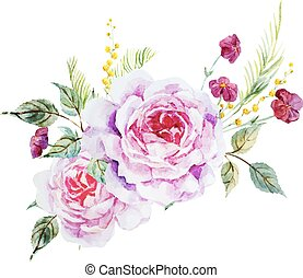rosas, agradável