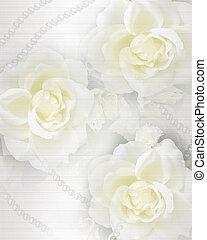 rosas, boda, plano de fondo, invitación
