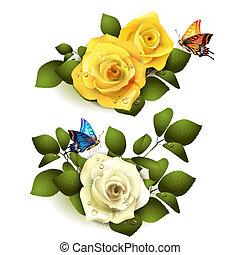 rosas, borboletas