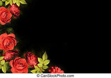 rosas, cartão vermelho