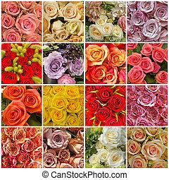 rosas, colagem