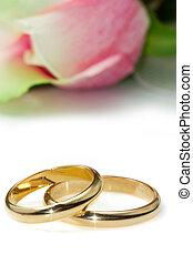rosas cor-de-rosa, anéis, casório