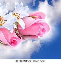rosas cor-de-rosa, e, lírios, nuvens