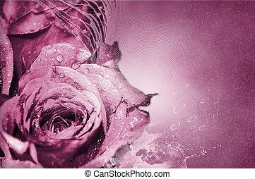 rosas cor-de-rosa, -, fundo