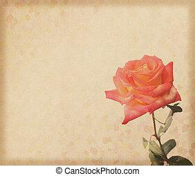 rosas, diseño, en, grunge